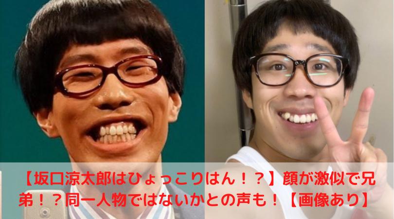 兄弟 坂口涼太郎