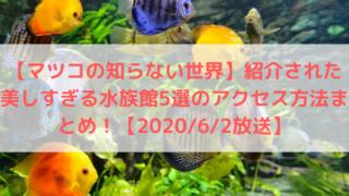 【マツコの知らない世界】紹介された美しすぎる水族館5選のアクセス方法まとめ!【2020/6/2放送】