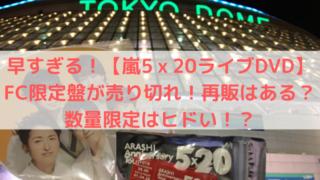 東京ドーム嵐のうちわ5x20チャームの写真