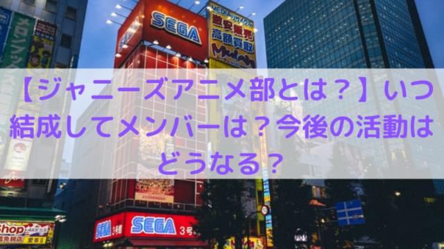 東京秋葉原の写真