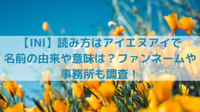 空と黄色い花の写真