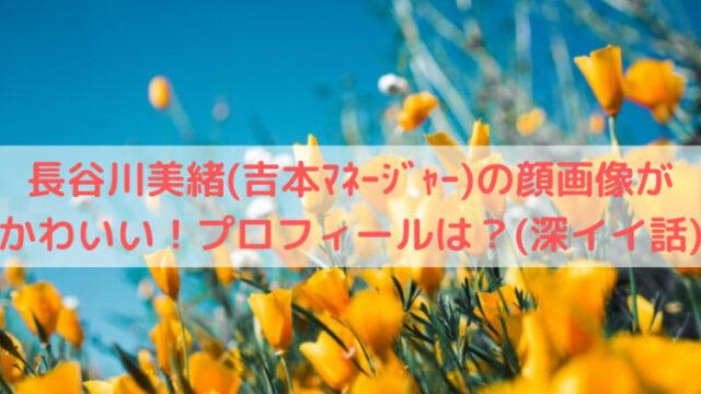 黄色い花と青い空の写真